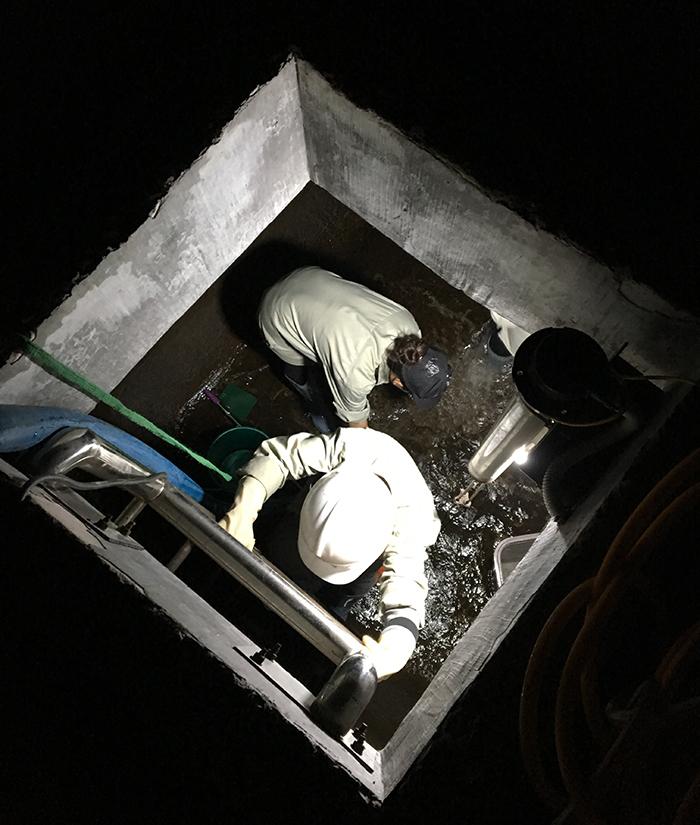Nhân viên Dịch vụ vệ sinh làm sạch đường ống nước sinh hoạt đang sử lý làm sạch bể chứa nước